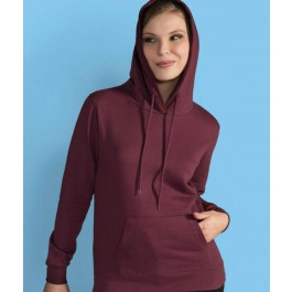 Heavy Blend Hooded sweater